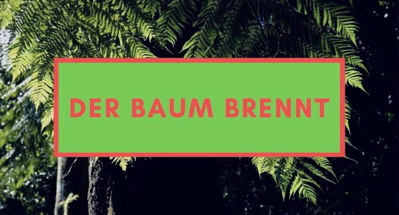 Weihnachtsbaum Dortmund elektrifiziert durch Kocher Elektrotechnik